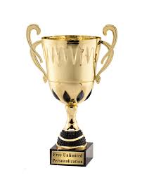 Where To Buy Bulk Trophy Online At Affordable Cost?